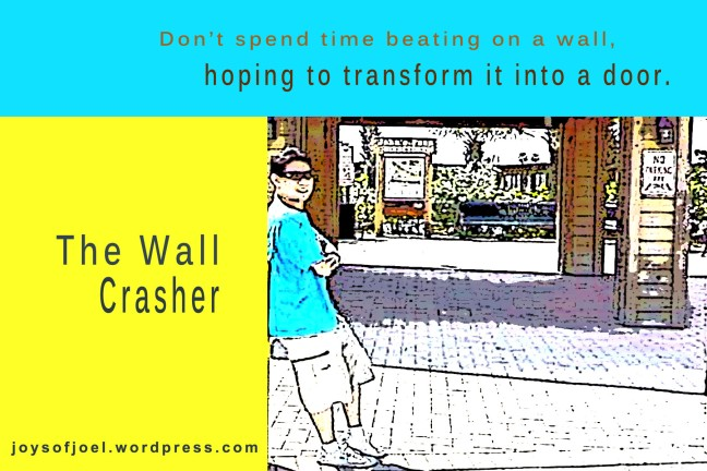 the wall crasher, digital arts with poetry, joys of joel poems, poem about a cougars worry