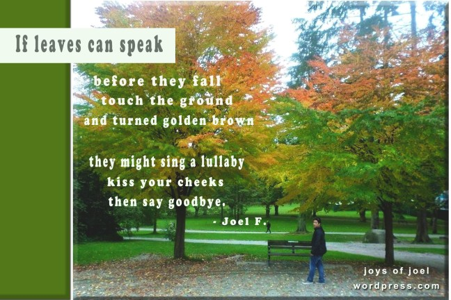 if leaves can speak, a poem about new beginnings, leaves and trees, photography, photos of trees, quotes about leaves, joys of joel poems, poetry