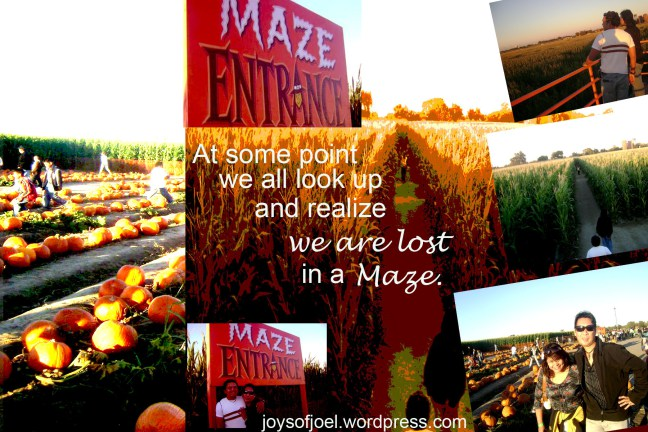 pumpkin maze, dell osso family farm, the biggest corn maze, joys of joel musings