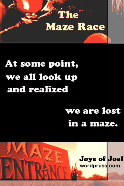 the maze race poetry, joys of joel poems, quote about life, maze race, realization