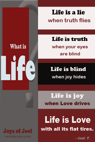 what is life, joys of joel poems, life quotes, rhyming poems, joys of joel quotes